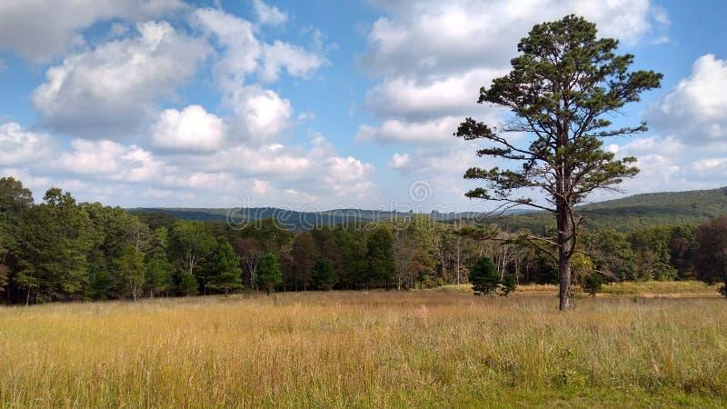 Arkansas-Fall-Wochenende lizenzfreie stockfotos