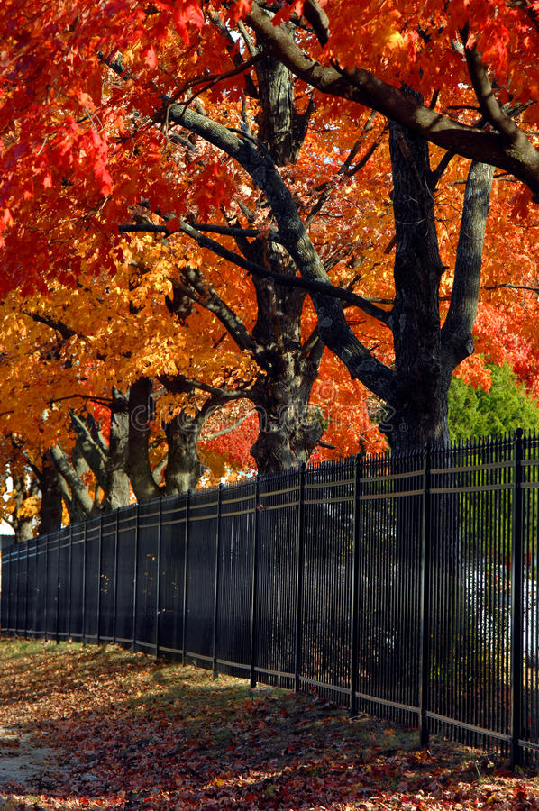 Arkansas-Herbst in Rogers stockbild