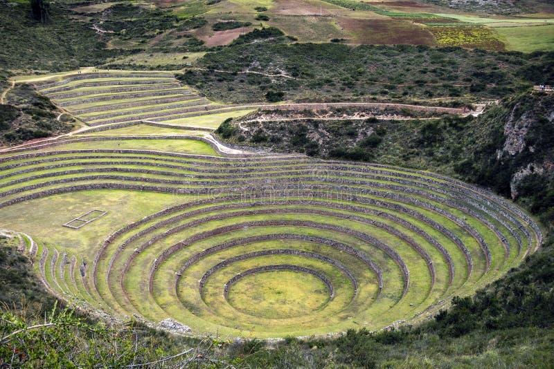 Arkeologisk plats för Moray i Peru royaltyfri bild