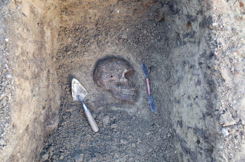 Arkeologisk utgrävning med skelett arkivbilder