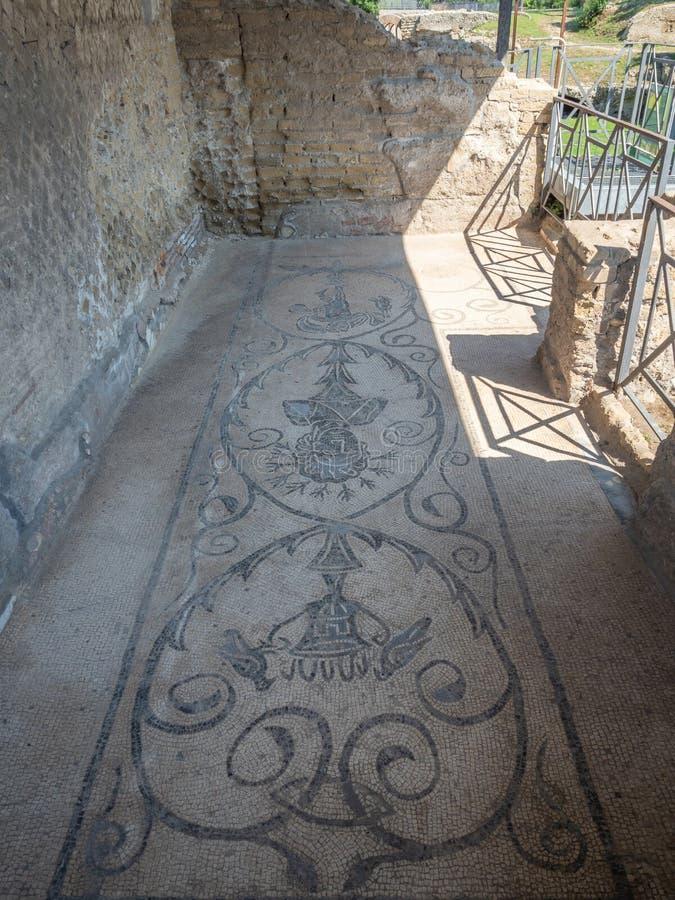 Arkeologiskt parkera av Baia, mosaikgolv arkivfoton