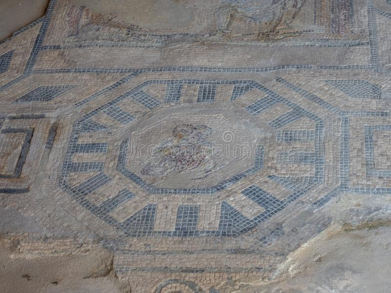 Arkeologiskt parkera av Baia, mosaikgolv royaltyfria bilder