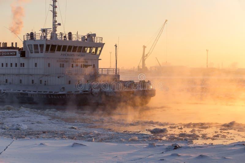 Arkhangelsk Ryssland - februari 8, 2017: Issäkerhetsbrytaren Kapitan Evdokimov bryter is på solnedgången arkivbild
