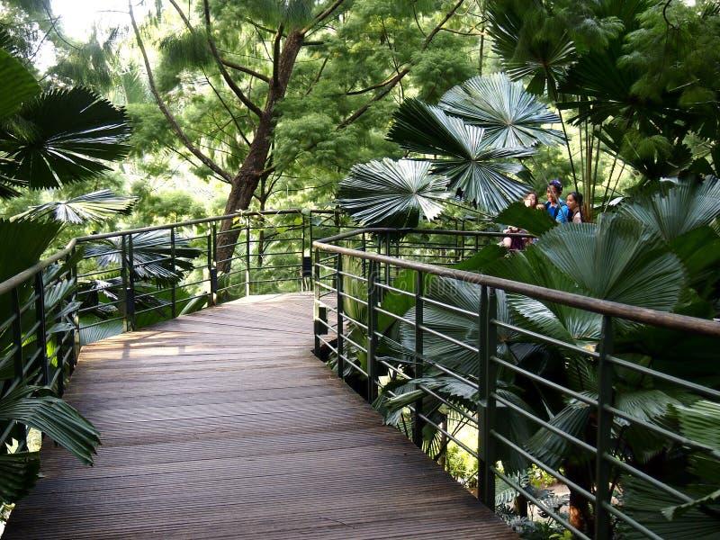Arkitektoniska designer inom de Singapore botaniska trädgårdarna i Singapore royaltyfri foto