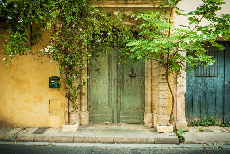 Arkitektur - höjd och växter för historisk byggnad främre royaltyfri foto