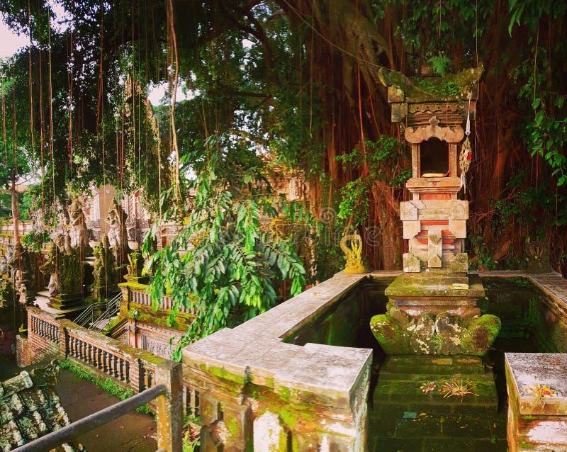 Arkitektur i djungler, Ubud, Bali royaltyfria bilder