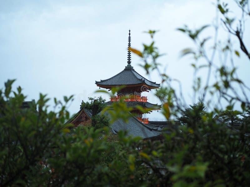 Arkitektur och träd under regnet royaltyfria foton