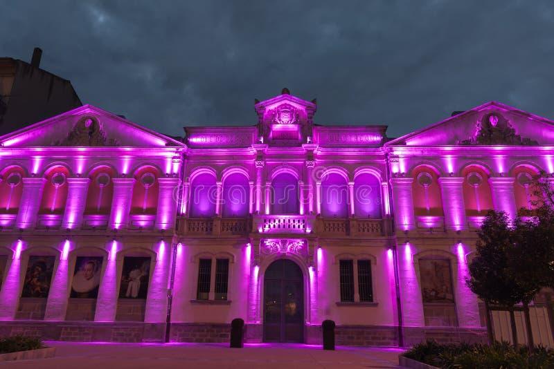 Arkiv av designskolabyggnad på natten i purpurfärgat ljus, Carc royaltyfri bild