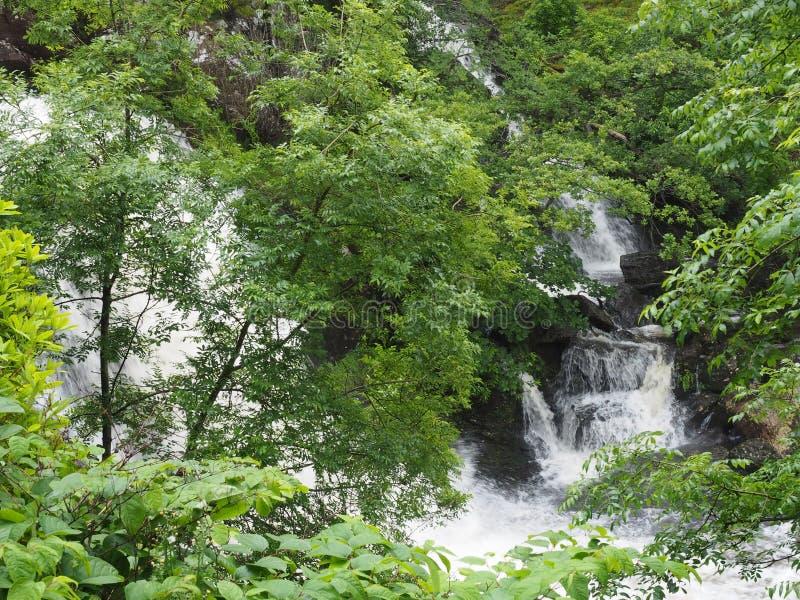 Arklet понижается - Inversnaid - Loch Lomond стоковое фото