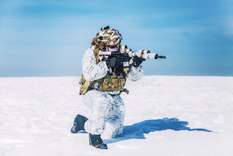 Arktische Kriegsführung des Winters Gebirgs lizenzfreie stockfotos