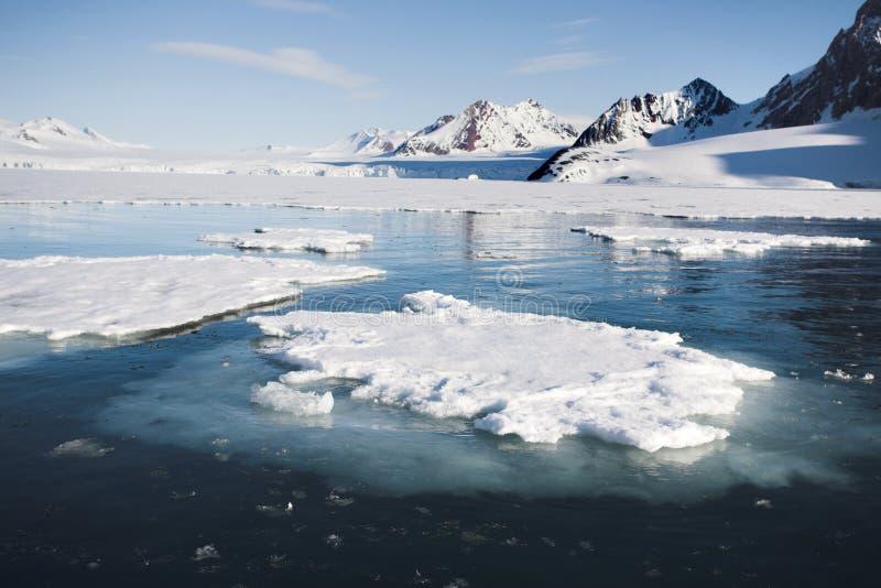 Arktische Landschaft - Gletscher und Berge stockfotos