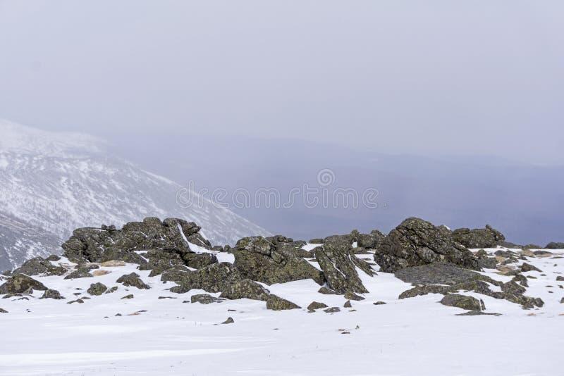 Arktische Landschaft mit Granitflusssteinen stockfoto