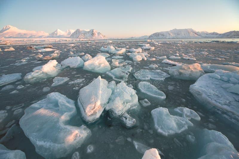 Arktische Landschaft - sich hin- und herbewegendes Eis lizenzfreies stockfoto