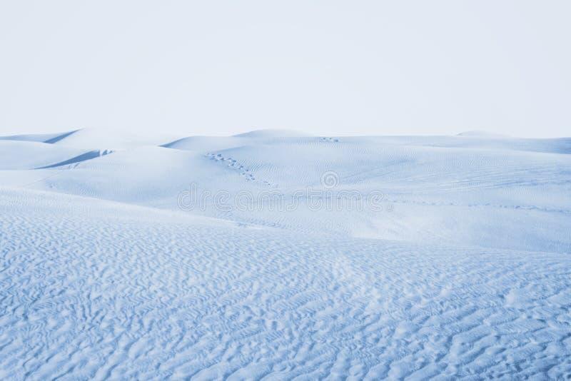Arktische Wüste Winterlandschaft mit Schneeantrieben lizenzfreie stockfotografie