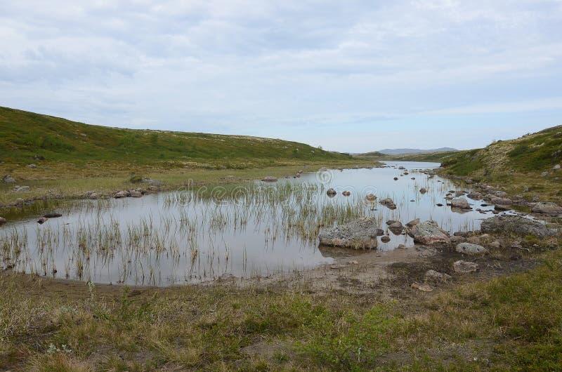 Arktischer See stockfoto