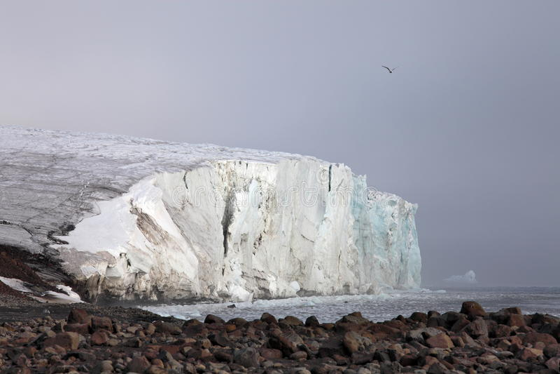 Arktisk glaciär royaltyfri foto