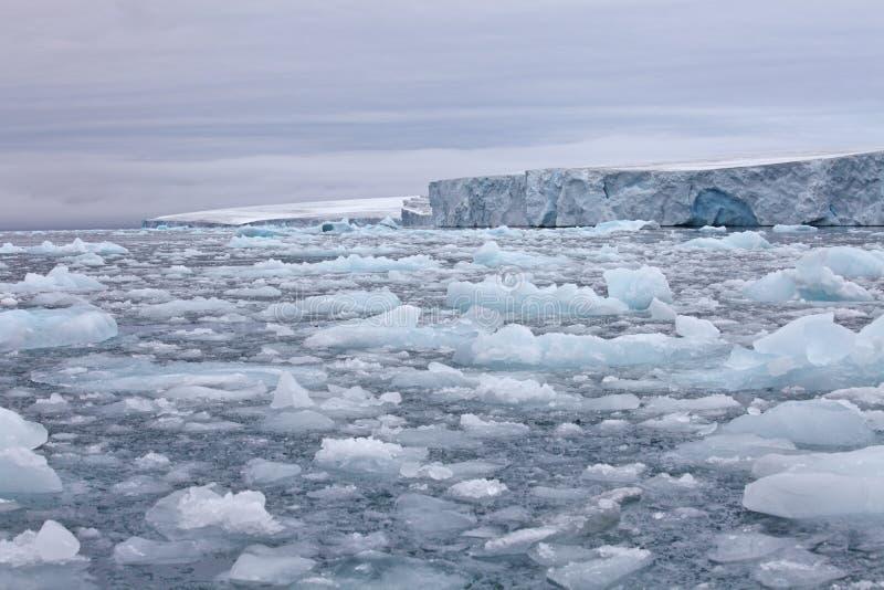 Arktisk glaciär arkivbild