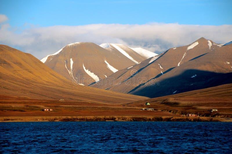 arktisk liggande royaltyfria bilder