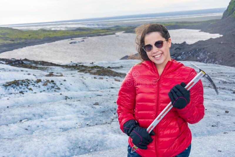 Arktisk tärna på den Borgarfjördur Eystri fjordmarina, Island arkivfoto