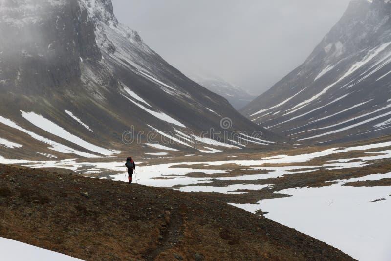Arktisk vandring fotografering för bildbyråer