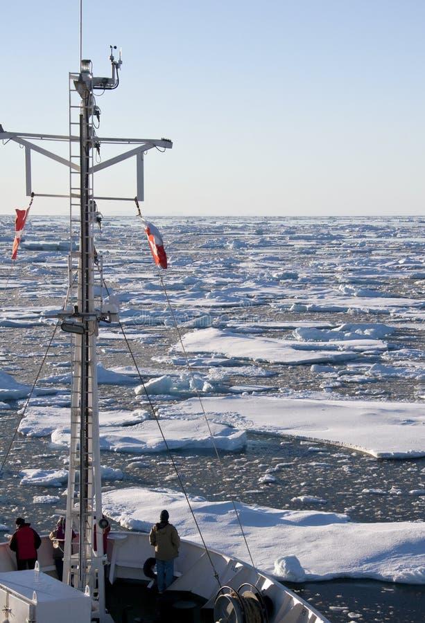 Arktiskt hav av kusten av Grönlandet royaltyfri fotografi