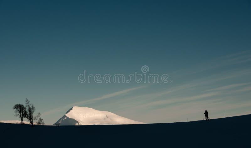 Arktiskt landskap med skidåkaren för argt land royaltyfri bild