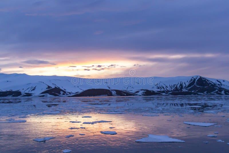 Arktyczny Jarzeniowy odbijać w wielorybnikach Trzymać na dystans, łudzenie wyspa, Antarct obrazy royalty free