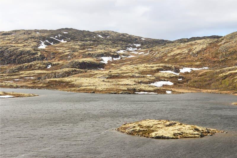 Arktyczny ocean zdjęcia stock