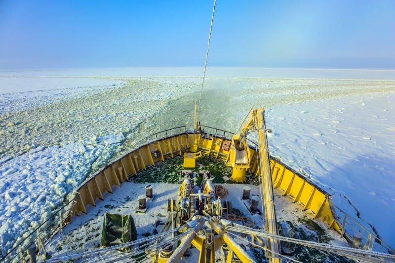 Arktyczny turystyczny rejs obrazy royalty free