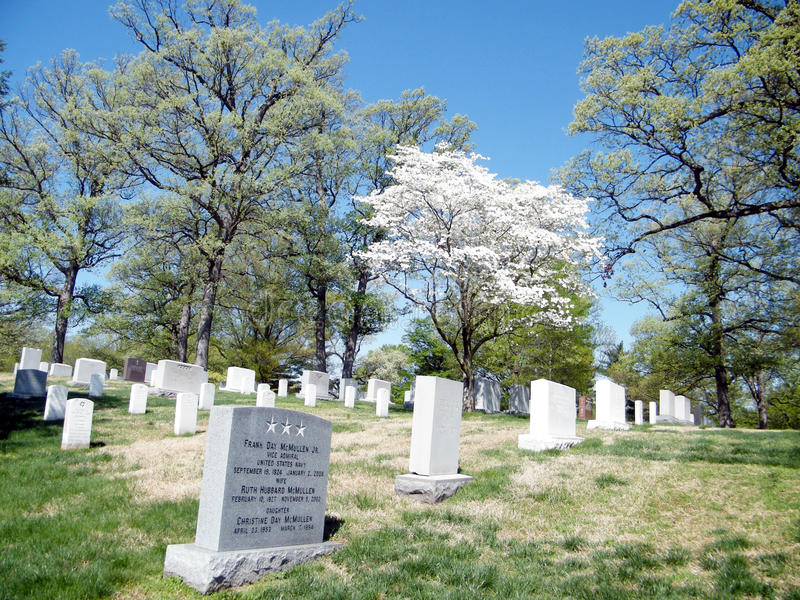 Arlington cimitero ciliegio aprile 2010 fotografia stock