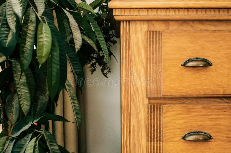 Armário de Brown com interior da casa da textura do fundo do close-up da planta da casa verde fotos de stock