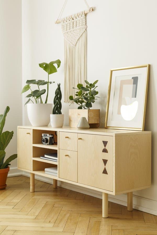 Armário de madeira decorado com plantas, câmera e cartaz em um whi fotografia de stock