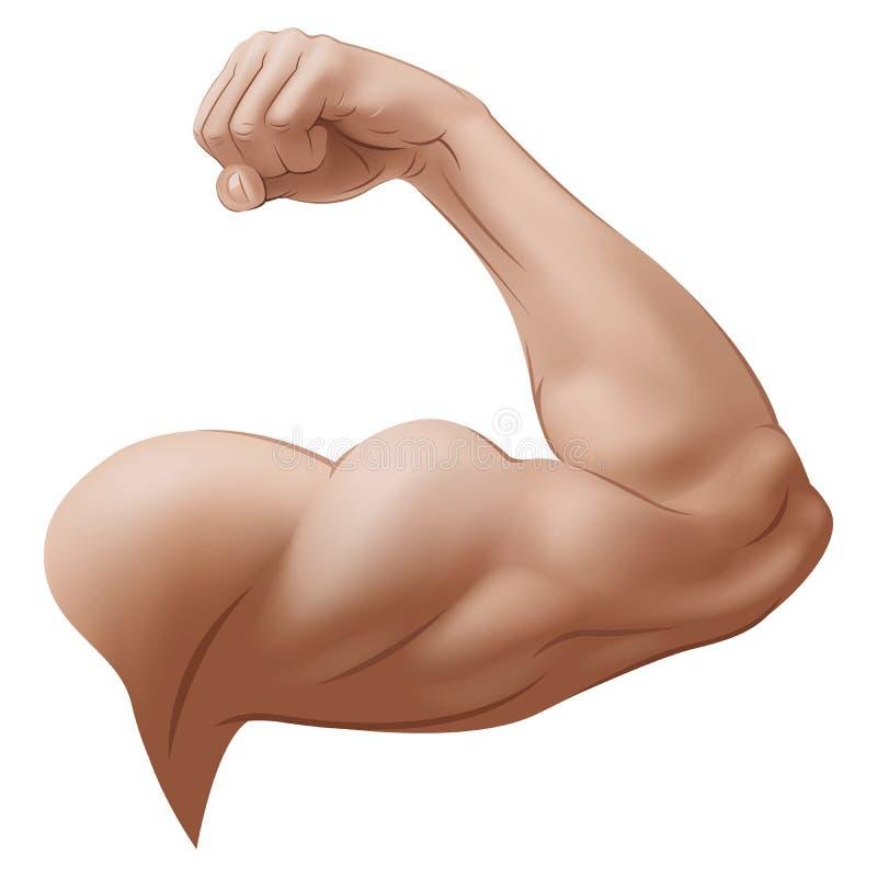 Arm des Mannes stock abbildung