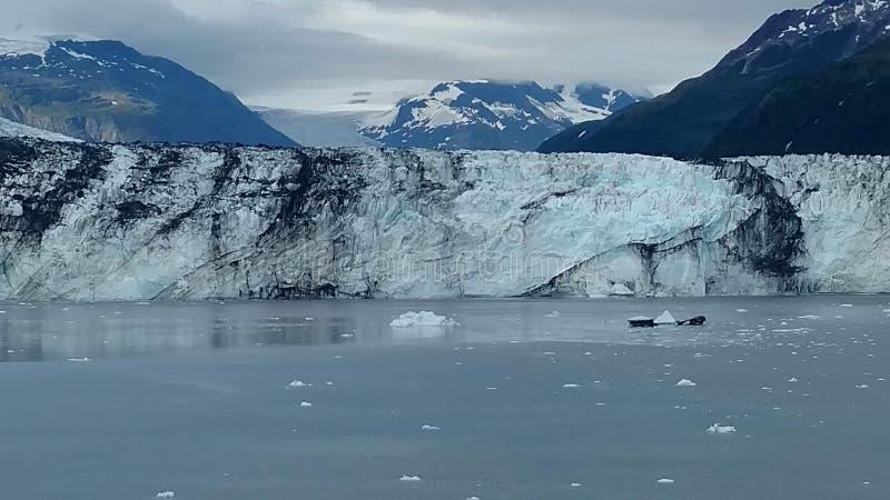 Arm Harvard-Gletscher-College-Fjord-Alaskas Harvard mit Schnee umfassten Bergspitzen und ruhiger Pazifischer Ozean mit Eisbergen  stockfotografie