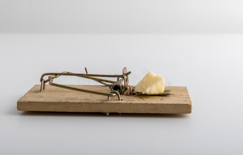 Armadilha de madeira do rato com isca do queijo, fundo claro fotos de stock