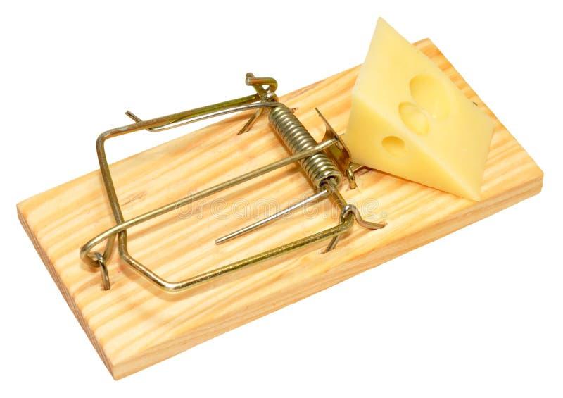 Armadilha e queijo do rato foto de stock royalty free