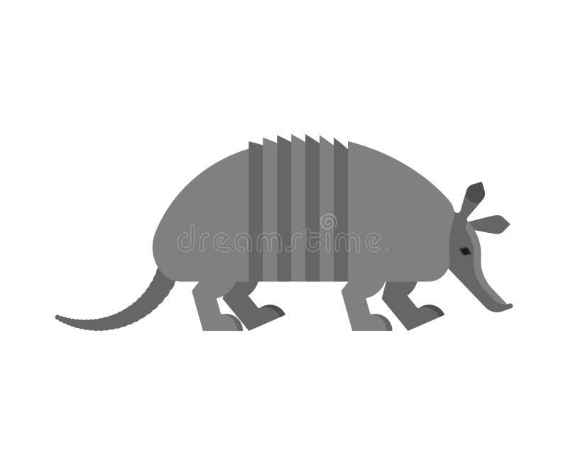 Armadillo isolated. Animal Nine-hip Armadillo vector illustration vector illustration