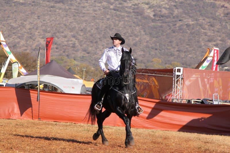 Download Armand поя ковбой на его черном жеребце Редакционное Стоковое Изображение - изображение: 58368759