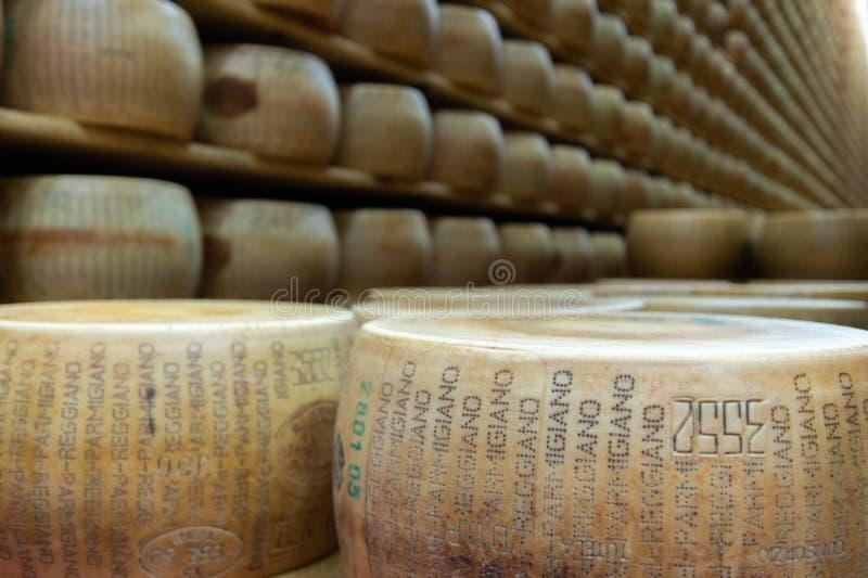 Armazém das formas em uma leiteria italiana fotografia de stock royalty free