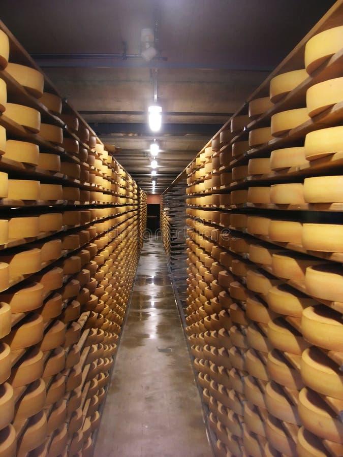 Armazém do queijo fotografia de stock royalty free