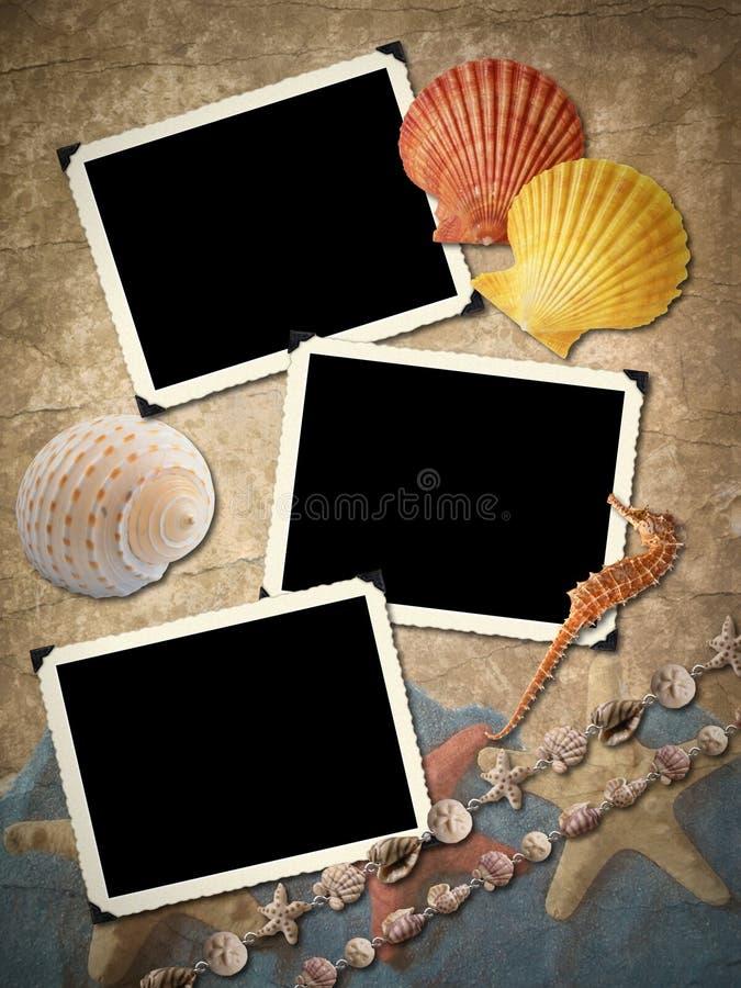 Armazones para una foto, conchas de berberecho. ilustración del vector