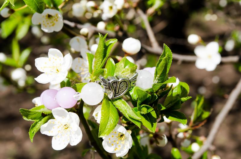 Armband på blommor Prydnader av deras stenar och blomningträd blodsugare Vita blommor mot den bl?a himlen Bakgrund arkivfoto