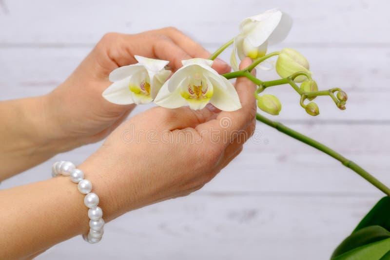 Armband von weißen Perlen und von Orchidee lizenzfreies stockbild