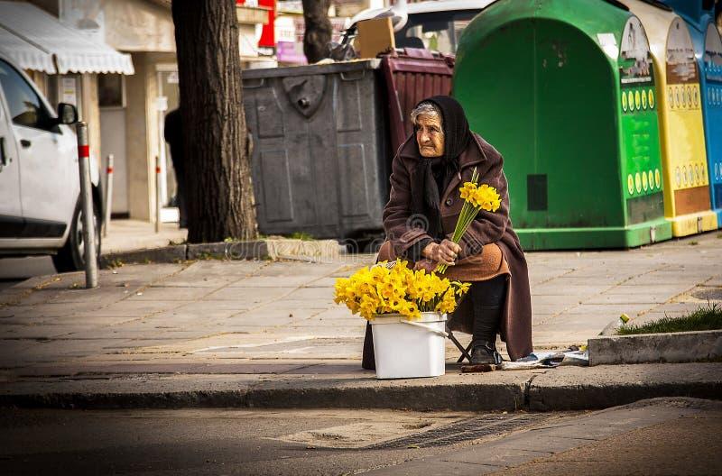 Arme obdachlose alte Frau verkauft Blumen auf der Straße, um in Burgas/Bulgaria/03/08/2016 auszuüben Nur redaktioneller Gebrauch stockfotografie