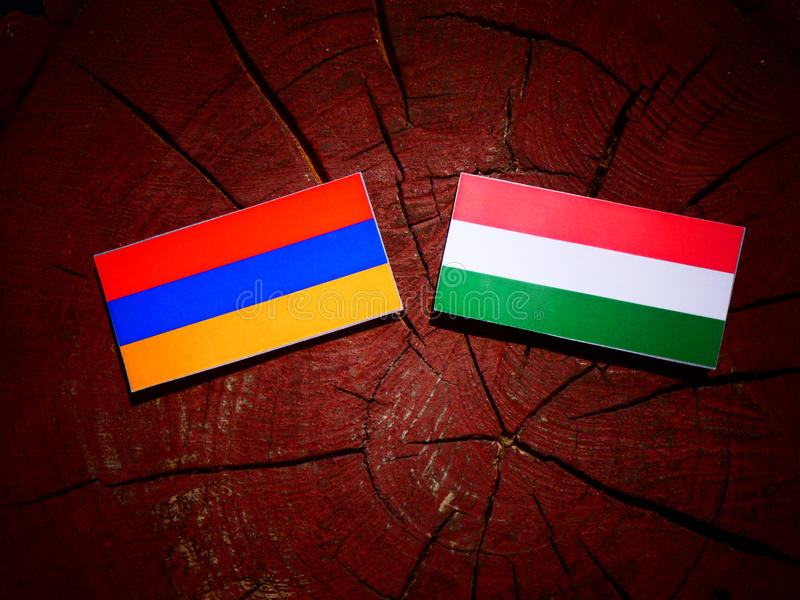 Armenian flag with Hungarian flag on a tree stump isolated stock illustration