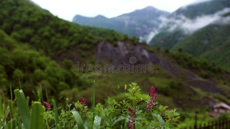 Armenisches Land von Bergen stockfoto