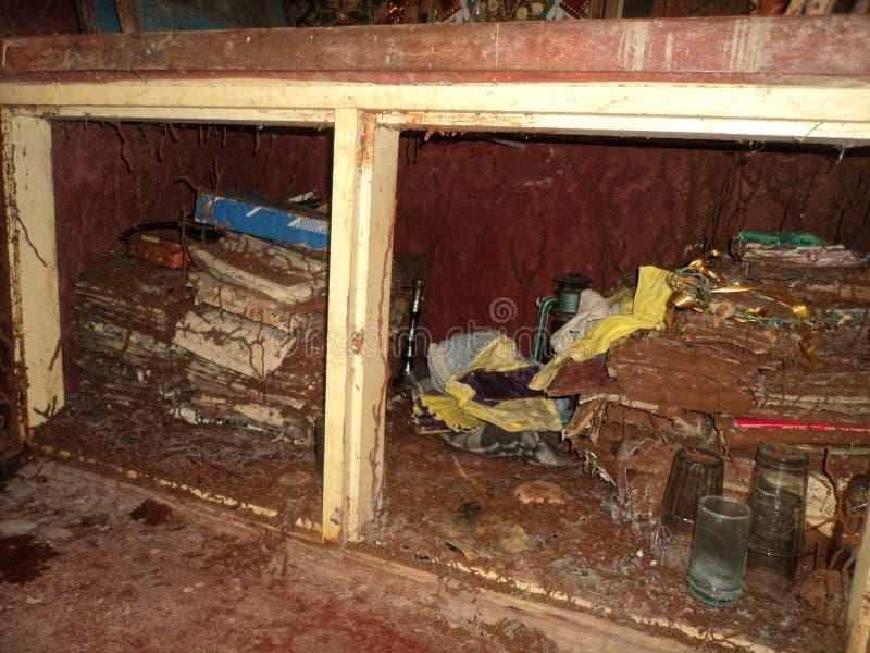Armoire infestée de Termite images libres de droits