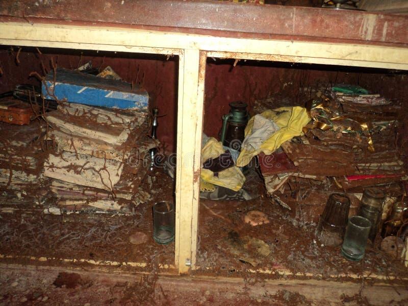 Armoire infestée de Termite photographie stock libre de droits