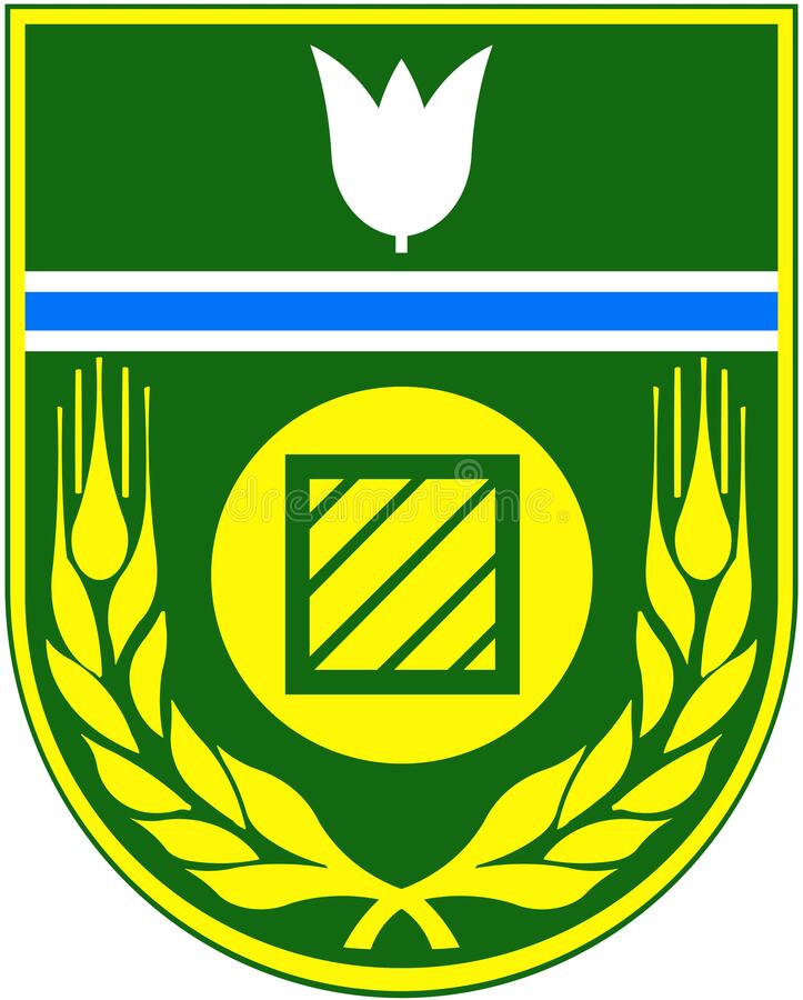 Armoiries du district de Birobidzhan Région autonome juive Russie illustration de vecteur