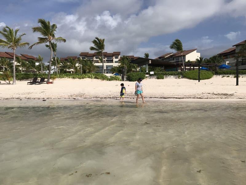 Armonia de Felicidad do playa do caribe do cana do punta de Puntacana fotos de stock